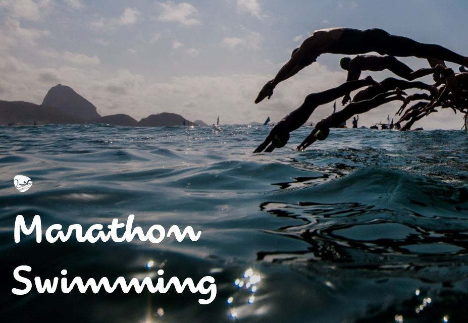 The 10 000 Meter Open Water Swim Race Nearly Two Hours Of A Grueling Swim Capped By A Furious